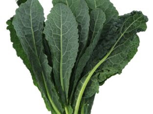 KALE SUPERFOOD VEGETABLE